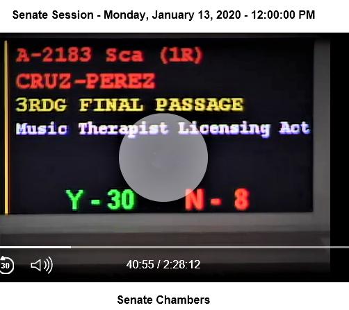 Senate Vote 1-13-2020 (2)